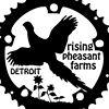 Rising Pheasant Farms