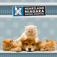 Heartland Niagara Animal Hospital