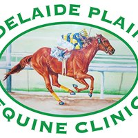 Adelaide Plains Equine Clinic