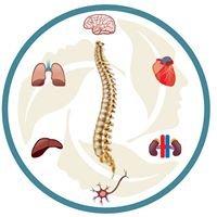 The University Health Network Osteoporosis Program