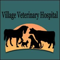 Village Veterinary Hospital