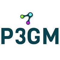 P3 Global Management