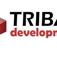 Leech Lake Tribal Development