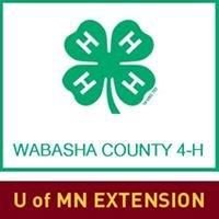 UMN Extension Wabasha County 4-H