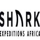 Shark Expeditions Africa