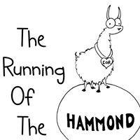 The Running of the Llamas