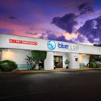 BluePearl Veterinary Partners - Peoria, AZ