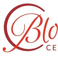 Bloomfield Center Alliance, Inc