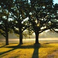 Three Oak Vineyards and Winery/ Three Oak Wines
