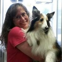 Whiting Veterinary Clinic LLC