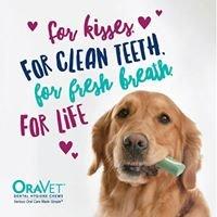 Value Pet Clinic Kent