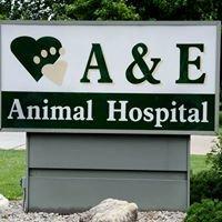A & E Animal Hospital