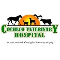 Cocheco Veterinary Hospital
