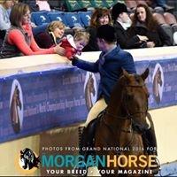 Dustin Freiheit Performance Horses