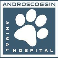 Androscoggin Animal Hospital