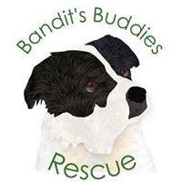 Bandit's Buddies Rescue