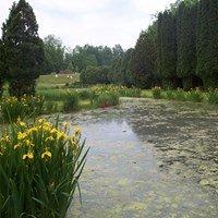 University Of Minnesota Landscape Arboretum