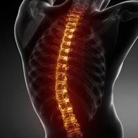 Lakeway Health & Wellness Chiropractic