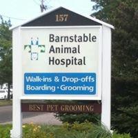 Barnstable Animal Hospital