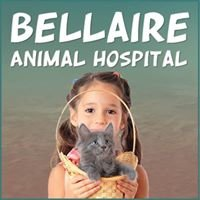 Bellaire Animal Hospital