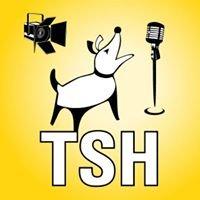 TSH Audio & Video