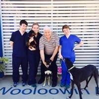 Wooloowin Animal Hospital