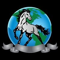 Academy Of Equine Dentistry