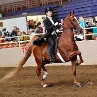 Kardia Equestrian Academy
