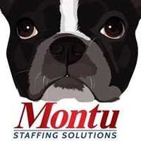 Montu Staffing Solutions