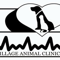 Village Animal Clinic, Oregon, WI