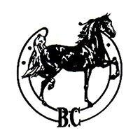 American Saddlebred Assoc. of BC