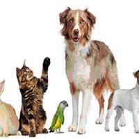 Ross-shire Pet & Wildlife