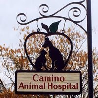 Camino Animal Hospital