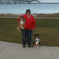 Pine Meadows Dog Training Center