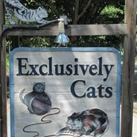 Exclusively Cats Veterinary Hospital