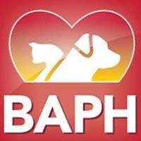 Bay Area Pet Hospital, Traverse City Michigan