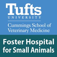 Foster Hospital for Small Animals at Tufts University
