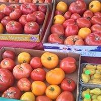 Battle Lake Farmers Market
