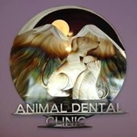 Animal Dental Clinic NW & Oral Surgery