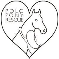 Polo Pony Rescue