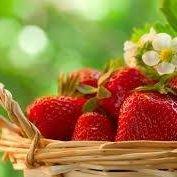 Miracle Strawberry Farm