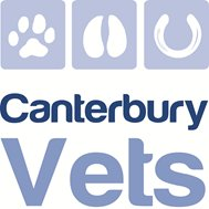Canterbury Vets