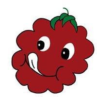 Knapton's - Raspberries, Pumpkins & Orchard