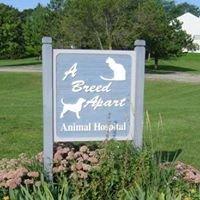 A Breed Apart Animal Hospital