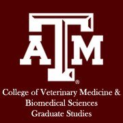 Graduate Studies in the CVM at Texas A&M University