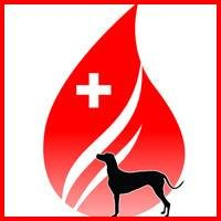 Mclean County Canine Blood Bank