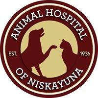 Animal Hospital of Niskayuna