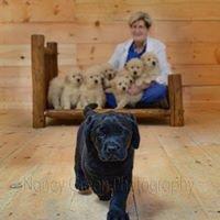 Blue Ribbon Veterinary Services, LLC