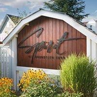 Spirit of Brandtjen Farm