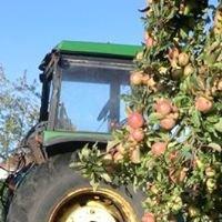 Les Noyers Farm Cidery